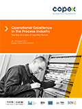 Operational Excellence in the Process Industry