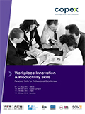 Innovation & Productivity in the Workplace