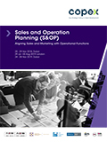 Sales and Operation Planning (S&OP)