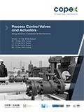 Process Control Valves and Actuators