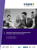 Strategic Organisational Development